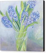 Hyacinths Canvas Print by Sophia Elliot