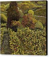I Filari In Autunno Canvas Print by Guido Borelli