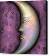I See The Moon 2 Canvas Print by Wendy J St Christopher