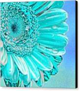 Ice Blue Canvas Print by Carol Lynch