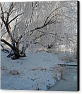 Ice Covered Tree And Creek In Montana Canvas Print by Bruce Gourley