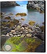 Iceland Rocky Coast Landscape Canvas Print by Dirk Ercken