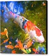 Impressionism  Koi 2 Canvas Print by Amy Vangsgard