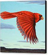In Flight Canvas Print by James W Johnson