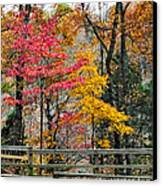 Indiana Fall Color Canvas Print by Alan Toepfer