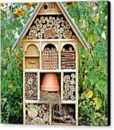 Insect Hotel Canvas Print by Olivier Le Queinec