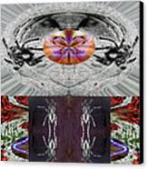 Inspiring Trust Spider - Spirit 2013 Canvas Print by James Warren