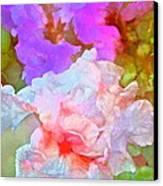 Iris 60 Canvas Print by Pamela Cooper
