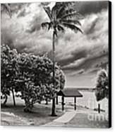 Isaac At The Inlet Canvas Print by Don Youngclaus