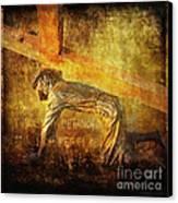 Jesus Falls Again Via Dolorosa 7 Canvas Print by Lianne Schneider