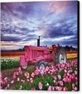 John Deere Pink Canvas Print by Darren  White
