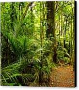 Jungle Scene Canvas Print by Les Cunliffe