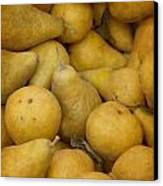 Just Pears Canvas Print by Rebecca Cozart