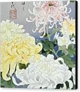 Kiku Crop I Canvas Print by Haruyo Morita