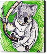 Koala Canvas Print by Andrea Keating