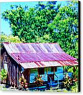 Kona Coffee Shack Canvas Print by Dominic Piperata