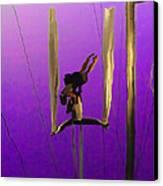 La Loupiote In Lavender Canvas Print by Anne Mott