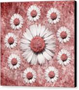 La Ronde Des Marguerites - Pink 02 Canvas Print by Variance Collections