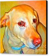 Labrador Painting Canvas Print by Iain McDonald