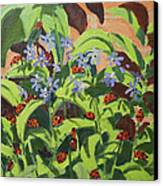 Ladybirds Canvas Print by Andrew Macara