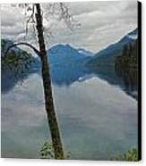 Lake Crescent - Washington - 01 Canvas Print by Gregory Dyer