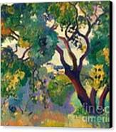 Landscape At St Tropez  1 Canvas Print by Pg Reproductions
