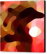 Las Tunas  Canvas Print by Amy Vangsgard