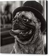 Last Call Pug Greeting Card Canvas Print by Edward Fielding