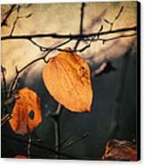 Last Leaves Canvas Print by Taylan Apukovska
