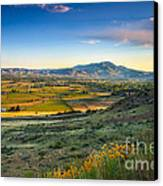 Late Spring Time View Canvas Print by Robert Bales