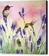 Lavender And Hummingbirds Canvas Print by Patricia Pushaw