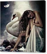 Leda And The Swan Canvas Print by Shanina Conway