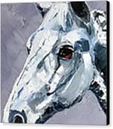 Legend Canvas Print by Susan A Becker
