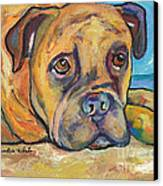 Lexie Canvas Print by Pat Saunders-White