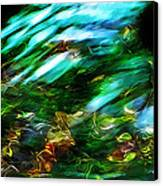 Life On The Streambed Canvas Print by Terril Heilman