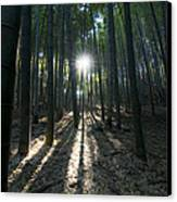 Light At The End Canvas Print by Aaron S Bedell