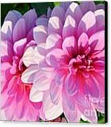 Light Shine Canvas Print by Kathleen Struckle