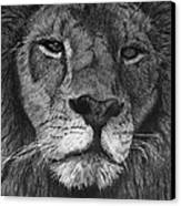 Lion Of Judah Canvas Print by Bobby Shaw