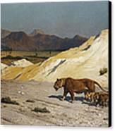 Lioness And Cubs Canvas Print by Jean Leon Gerome