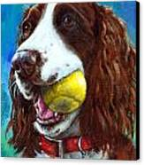 Liver English Springer Spaniel With Tennis Ball Canvas Print by Dottie Dracos
