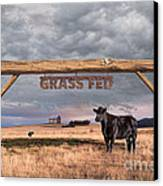 Log Entrance To Grass Fed Angus Beef Ranch Canvas Print by Susan McKenzie