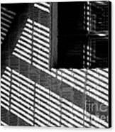 Long Shadows Canvas Print by Steven Milner