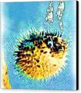 Long-spine Fish Canvas Print by Daniel Janda