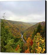 Looking Downstream At Blackwater River Gorge In Fall Canvas Print by Dan Friend