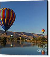 Looking For A Place To Land Canvas Print by Mike  Dawson