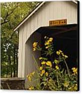 Loux Bridge And Tickseed In September Canvas Print by Anna Lisa Yoder