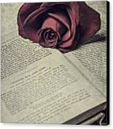 Love Stories Canvas Print by Joana Kruse