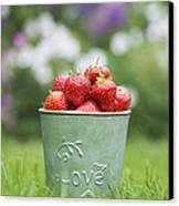 Love Strawberries Canvas Print by Tim Gainey