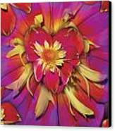 Loveflower Orangered Canvas Print by Alixandra Mullins