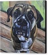 Lugnut Canvas Print by Donna Tuten